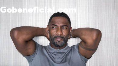 Idris Elba, a Star of The Suicide Squad Wants to Make Bloodsport Vs Superman Movie