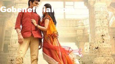 Bhavai Movie Box office Collection